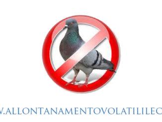 Allontanare-piccioni